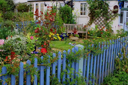 garden - improve your feng shui