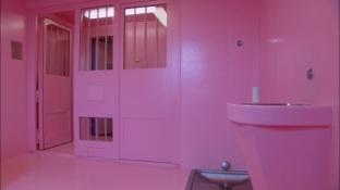 pinkprison