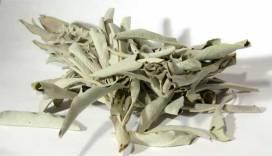 sage leaves - jenny blume feng shui